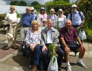 Bluebell Cottage Gardens 2014